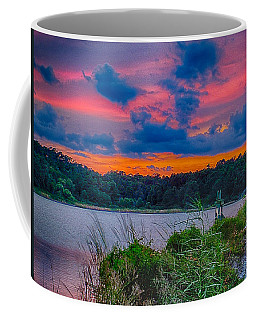 Coffee Mug featuring the photograph Pre-sunset At Hbsp by Bill Barber