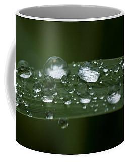 Precious Water Coffee Mug