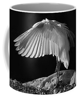 Preening Great Egret By H H Photography Of Florida Coffee Mug