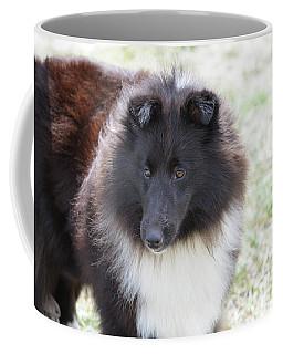 Pretty Black And White Sheltie Dog Coffee Mug