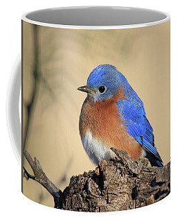 Pretty Bluebird Coffee Mug