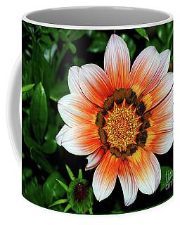 Coffee Mug featuring the photograph Pretty Gazania By Kaye Menner by Kaye Menner