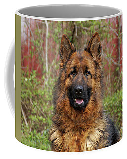 Coffee Mug featuring the photograph Pretty Girl Onja by Sandy Keeton