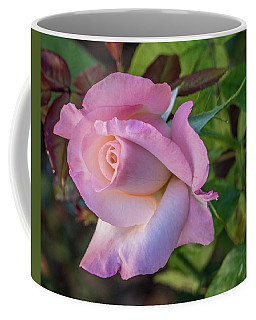 Pretty In Pink Coffee Mug by Jane Luxton