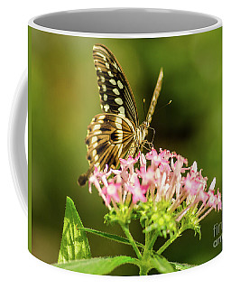 Coffee Mug featuring the photograph Pretty Lady by Nick Boren