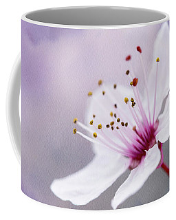 Coffee Mug featuring the photograph Pretty by Linda Lees