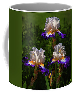 Pretty Maids In Spring Glory Coffee Mug by Jim Moore