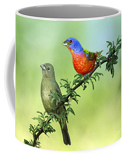 Pretty Painted Buntings Perched Coffee Mug