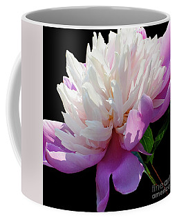 Pretty Pink Peony Flower On Black Coffee Mug by Carol F Austin