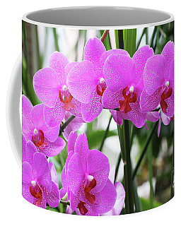Pretty Pink Phalaenopsis Orchids #2 Coffee Mug