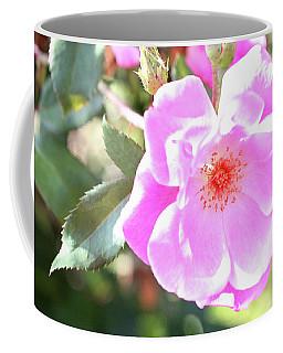 Pretty Pink Rose Coffee Mug