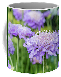 Coffee Mug featuring the photograph Pretty Purple by Nick Bywater