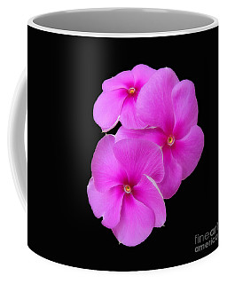 Coffee Mug featuring the photograph Pretty Purple Triplets by Sue Melvin