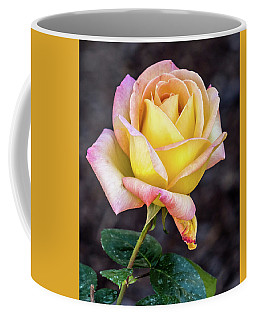 Pretty Rose Coffee Mug by Jane Luxton