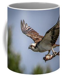 Prey In Talons Coffee Mug