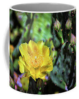 Prickly Pear Cactus Flower On Assateague Island Coffee Mug