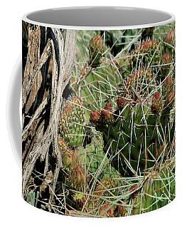 Prickly Pear Revival Coffee Mug