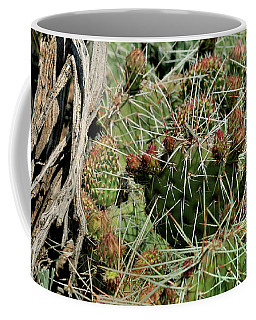 Prickly Pear Revival Coffee Mug