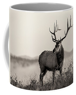 Coffee Mug featuring the photograph Prince Of Grassland Bw by Jonathan Nguyen