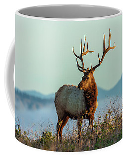 Coffee Mug featuring the photograph Prince Of The Grassland by Jonathan Nguyen