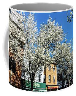 Princeton Spring 2018 Coffee Mug