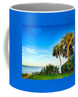 Private Paradise  Coffee Mug