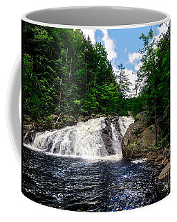 Profile Falls Bristol N H Coffee Mug by Mim White
