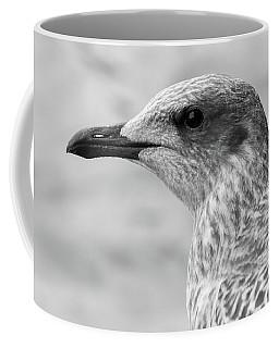 Coffee Mug featuring the photograph Profile Of Juvenile Seagull Bw by Jacek Wojnarowski