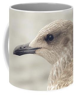 Coffee Mug featuring the photograph Profile Of Juvenile Seagull by Jacek Wojnarowski