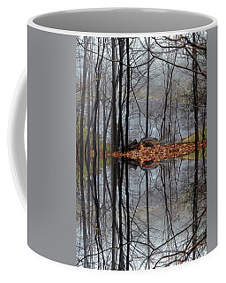 Projecting Contentment Coffee Mug