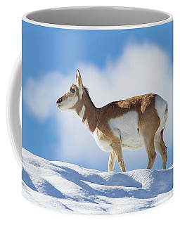 Pronghorn Doe On Snowy Ridge Coffee Mug