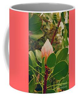 Protea Bud Coffee Mug by Cassandra Buckley