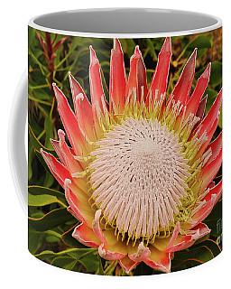 Protea I Coffee Mug by Cassandra Buckley