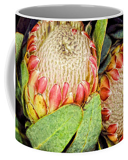 Proteas II Coffee Mug
