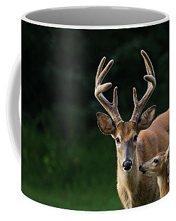 Coffee Mug featuring the photograph Protective Dad by Andrea Silies