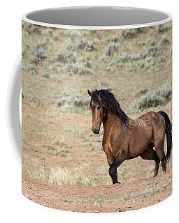 Coffee Mug featuring the photograph Proud And Free by Ronnie and Frances Howard