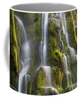 Coffee Mug featuring the photograph Proxy Falls Form And Light by Leland D Howard