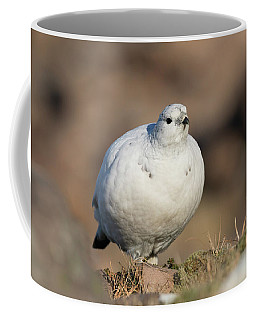 Ptarmigan Going For A Stroll Coffee Mug
