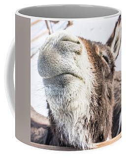 Pucker Up, Baby Coffee Mug