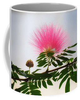 Puff Of Pink - Mimosa Flower Coffee Mug by MTBobbins Photography