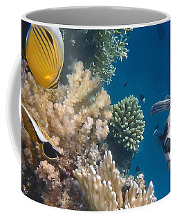 Pufferfish And Butterflyfish Coffee Mug