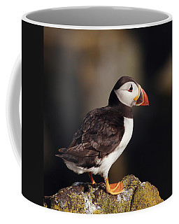 Puffin On Rock Coffee Mug