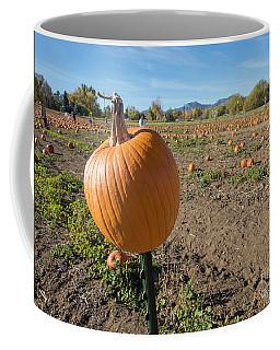 Pumpkin Patch Coffee Mug by Juli Scalzi