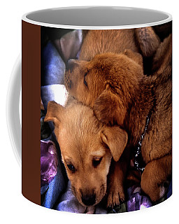 Coffee Mug featuring the photograph Puppies by Samuel M Purvis III