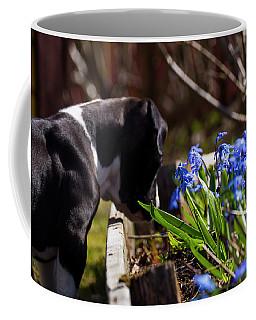 Puppy And Flowers Coffee Mug by Tamara Sushko
