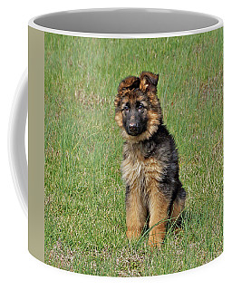 Coffee Mug featuring the photograph Puppy Halo by Sandy Keeton