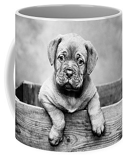 Puppy - Monochrome 3 Coffee Mug