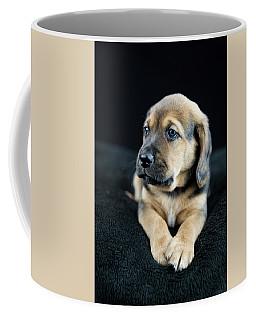 Puppy Portrait Coffee Mug