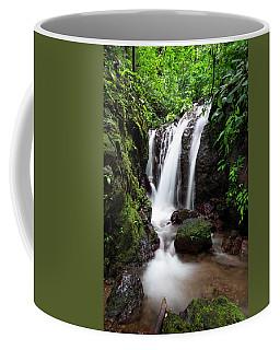 Pura Vida Waterfall Coffee Mug