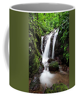 Pura Vida Waterfall Coffee Mug